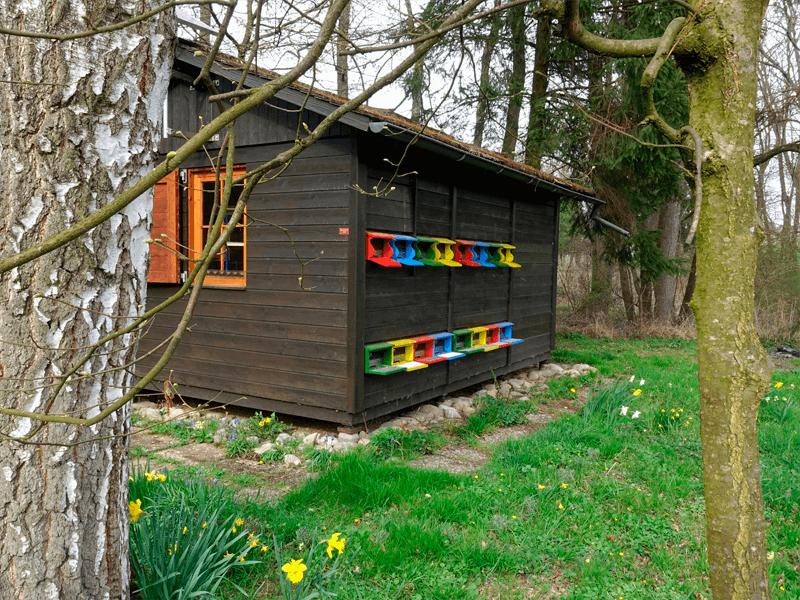 Bienenhaus im Frühling