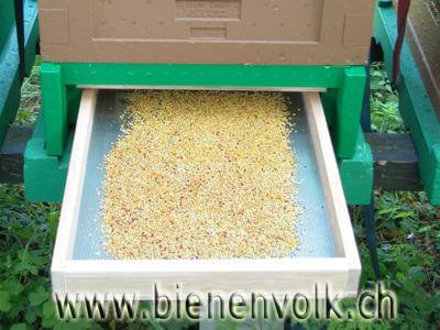 Pollenschublade mit Tagesernte