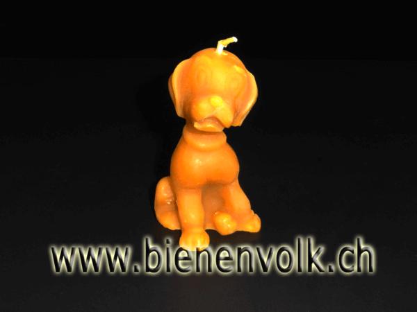Bienenwachskerze Hund