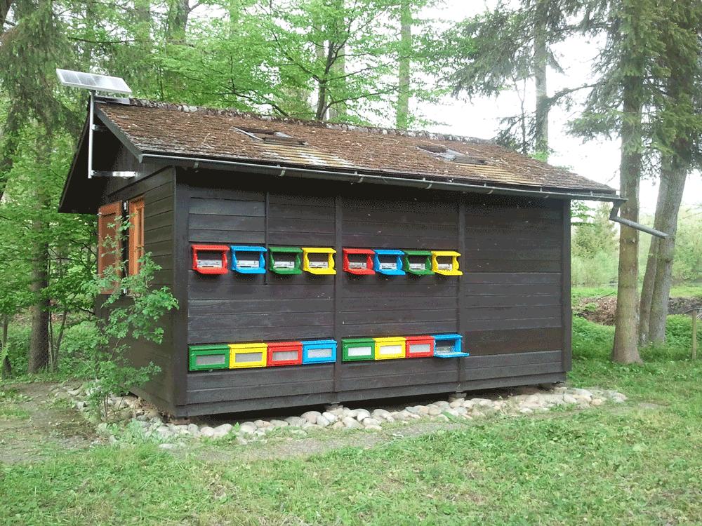 frisch renoviertes Bienenhaus