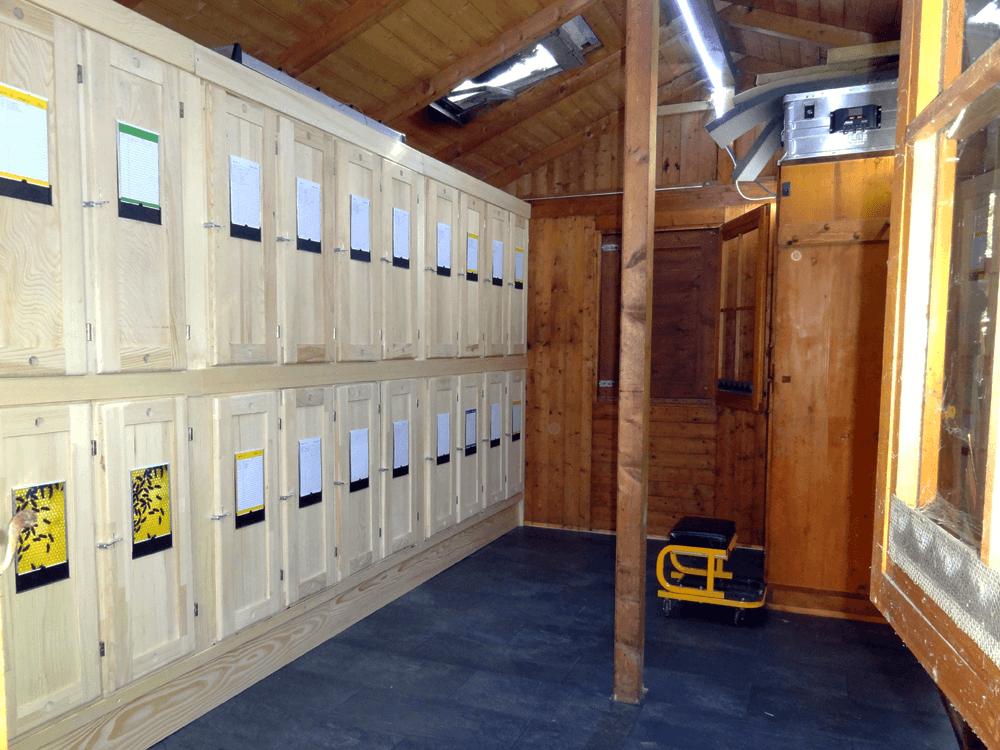 Innenansicht, neue Bienenkästen und neuer Boden