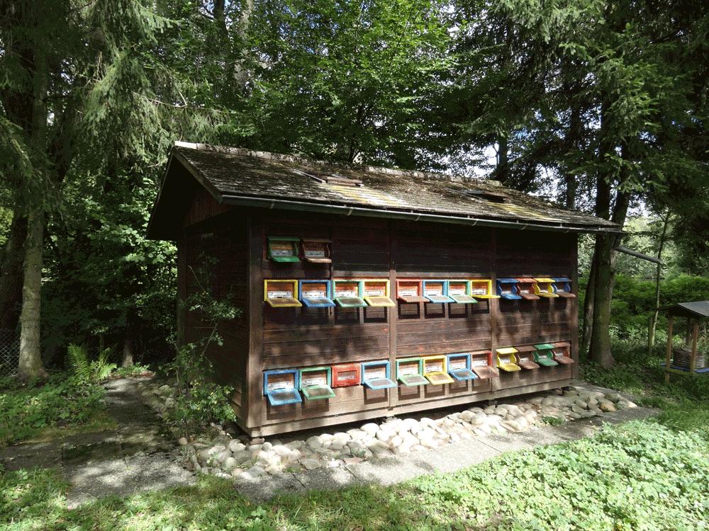 schönes Bienenhaus vor der ersten Renovation