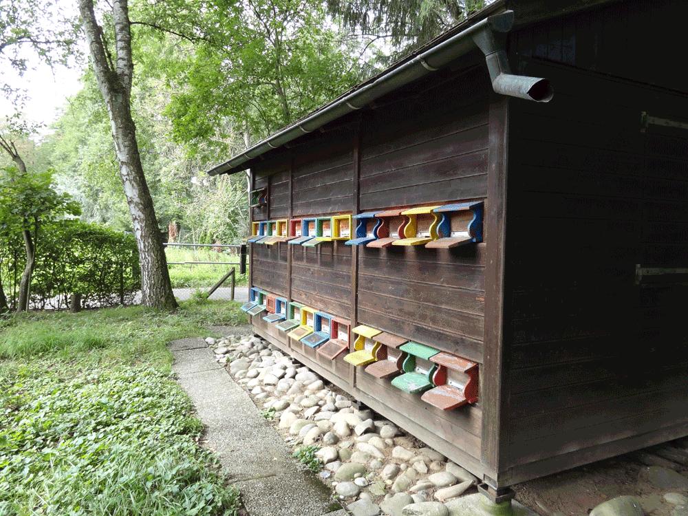 ca. 40 jähriges Bienenhaus vor der ersten Renovation