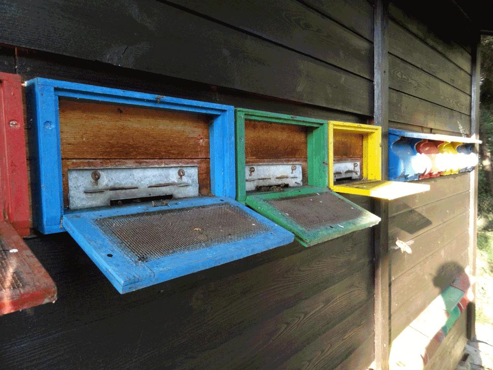 Bienenhaus bei der Übernahme