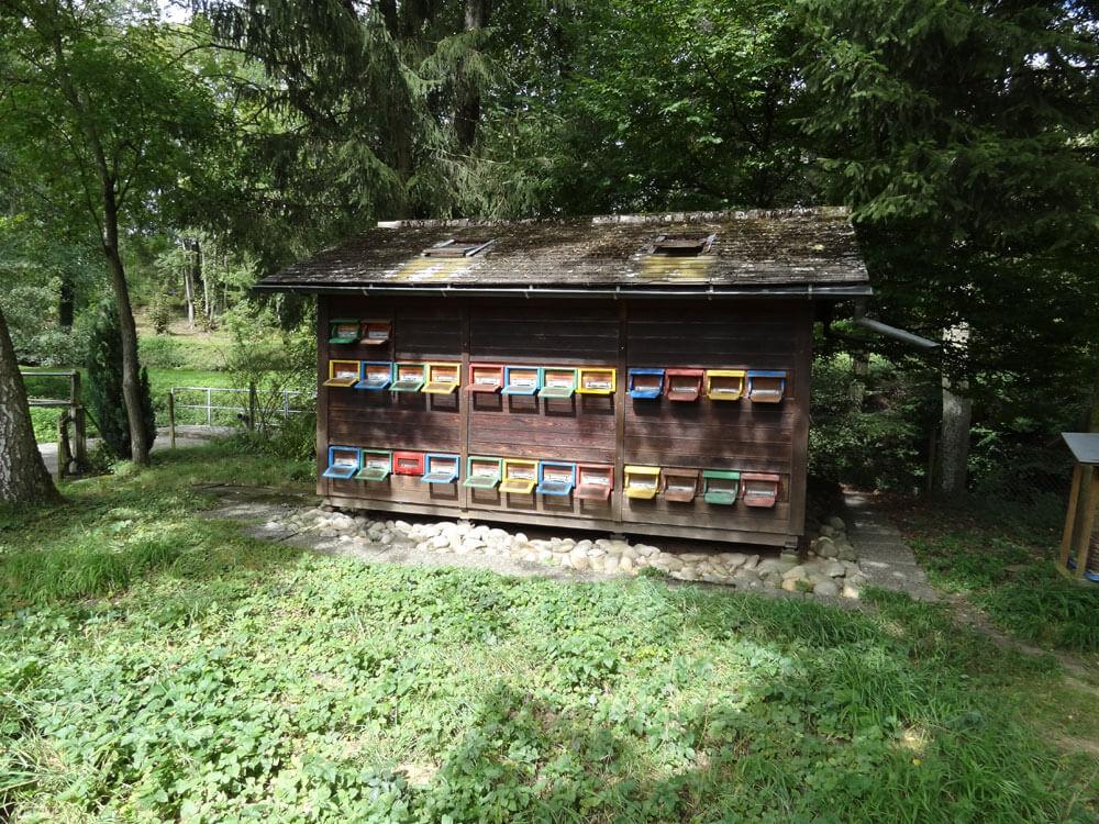 Bienenhaus für 24 Völker bei der Übernahme